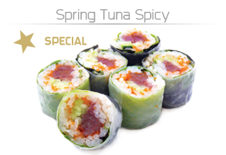 Spring-Tuna-Spicy-pequeno_eng